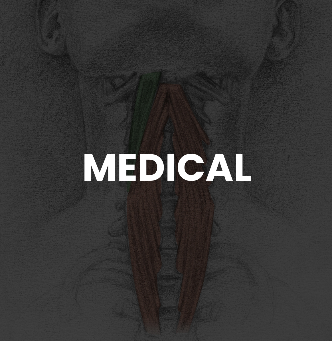 CategoryMasters_MEDICAL